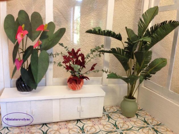Hibiscus,feuillage et palmier